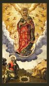Икона: Икона: Явление Пресв. Богородицы св. Апостолу Андрею на горах Киевских - BJA01